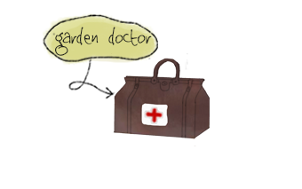 Garden doctor by lanscape gardener based in Surrey.